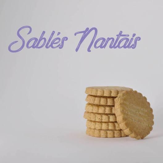 Biscuit La délicatesse 1