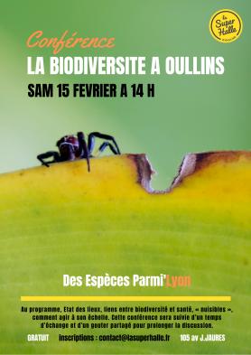 affiche Biodiversité à Oullins araignée
