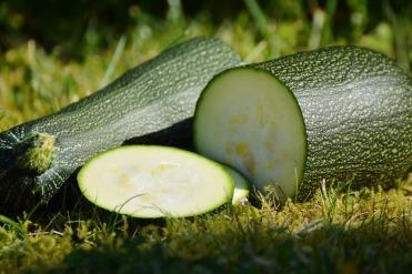 zucchini-1659094_1920